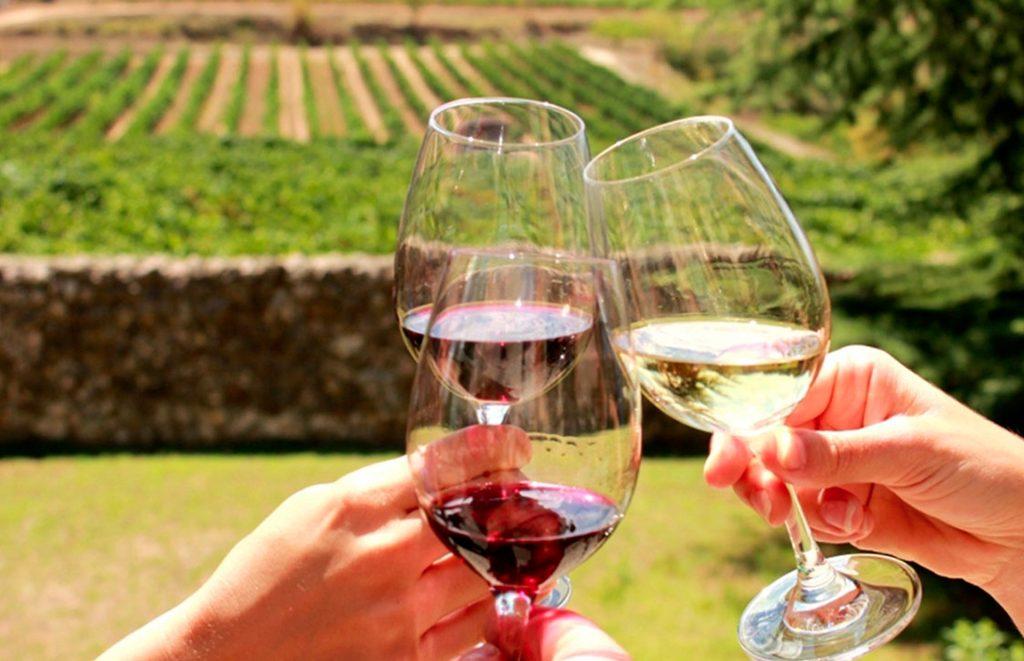 wine tasting vesuvius